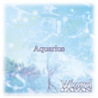 Wizard Japan - Aquarius (Euro Version)
